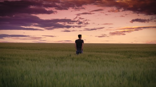 A man standing in the middle of a greenfield looking at the horizon